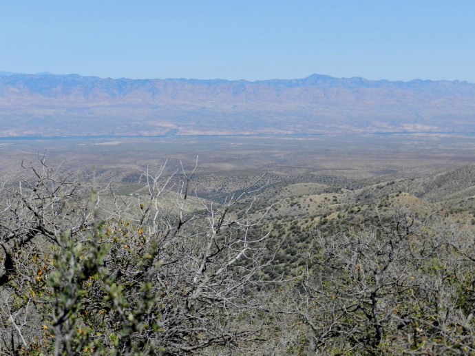 The San Pedro Valley and Beyond