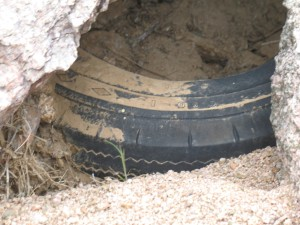 A flash flood moving boulders trapping a very old tire
