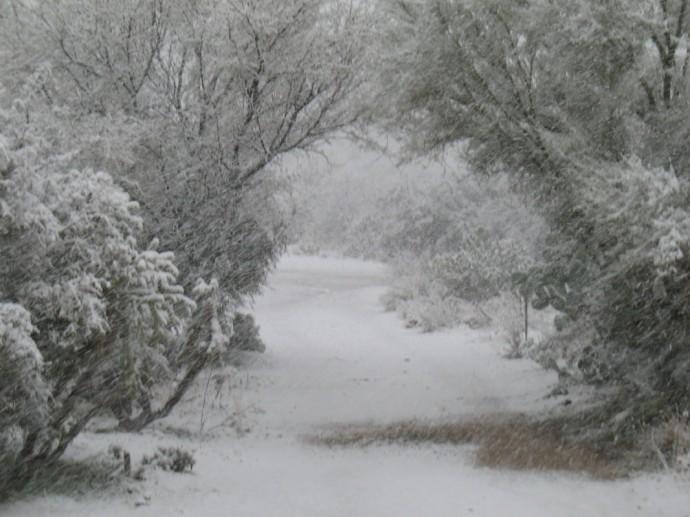 My Driveway