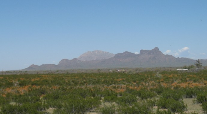 Picacho Peak in the distance.