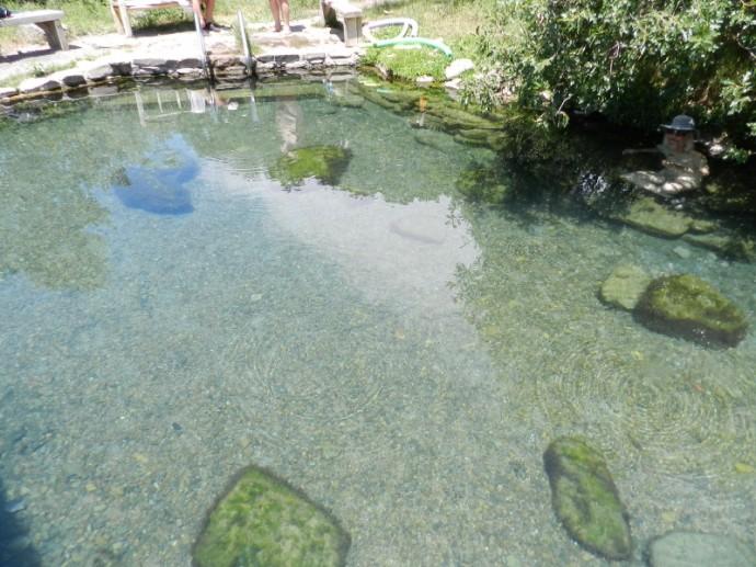 The Pool is Kinda Zen