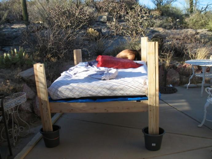 New Outdoor Bed