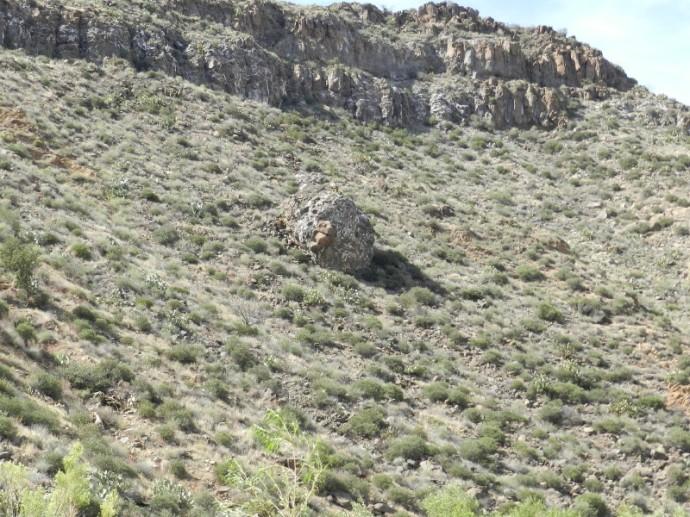 A Similar Boulder