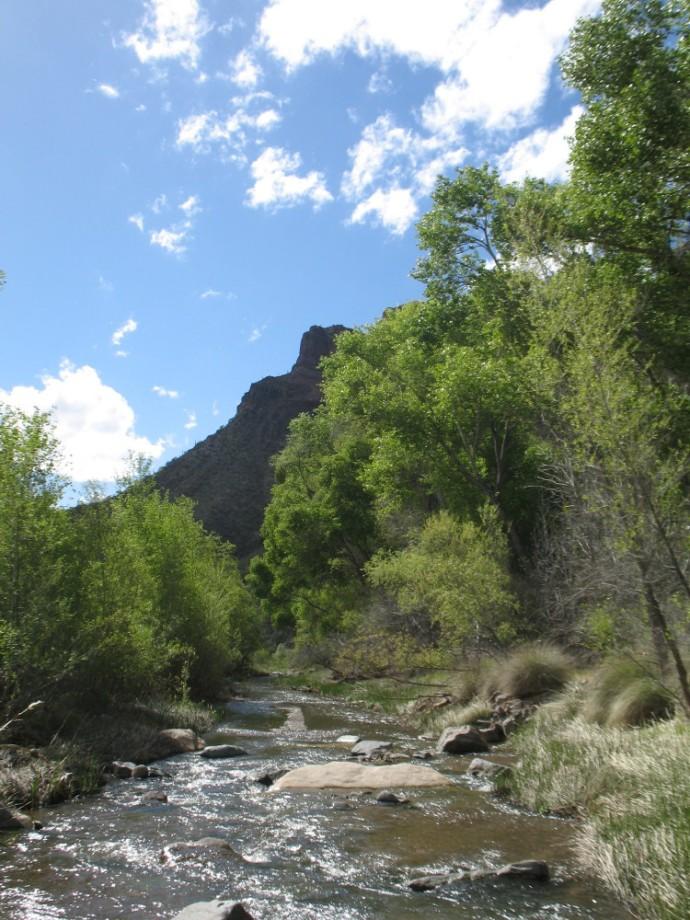 Downstream toward where we saw Green Pants